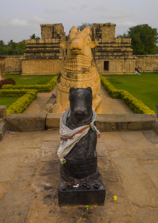 Carvings Of Nandi Bull In The Garden Of The  Brihadishwara Temple, Gangaikondacholapuram, India