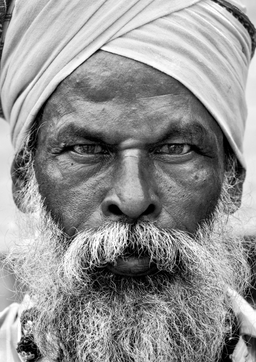 Portrait Of An Old Sadhu Wearing A Turban And A White Beard, Trichy, India