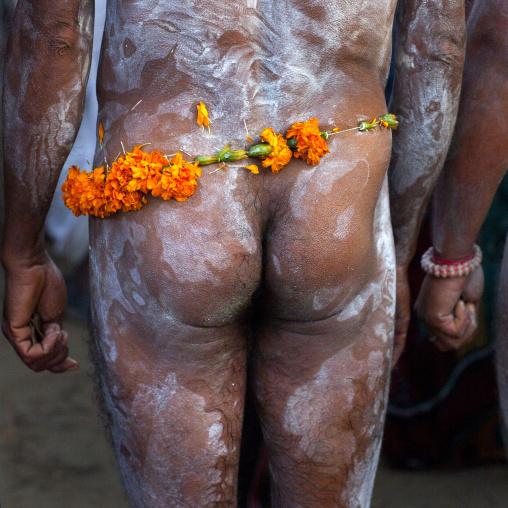 Naked Naga Sadhu, Maha Kumbh Mela, Allahabad, India