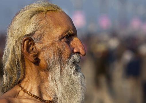 Naga Sadhu, Maha Kumbh Mela, Allahabad, India
