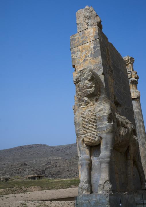 Ancient horse statue, Fars province, Persepolis, Iran