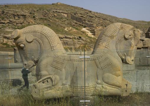Sculpture of horse head, Fars province, Persepolis, Iran