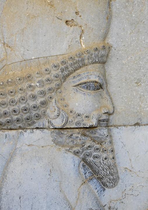 Bas-relief depicting a persian guard, Fars province, Persepolis, Iran