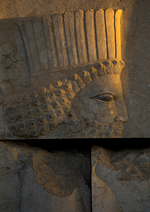 Bas-relief of a persian guard in Persepolis, Fars Province, Marvdasht, Iran