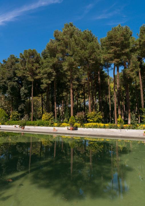 Chehel Sotoun garden, Isfahan Province, Isfahan, Iran