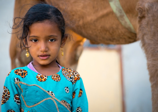 young girl in blue dress in front of a camel, Qeshm Island, Salakh, Iran