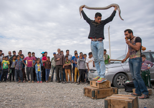 man showing a snake to the spectators, Hormozgan, Minab, Iran