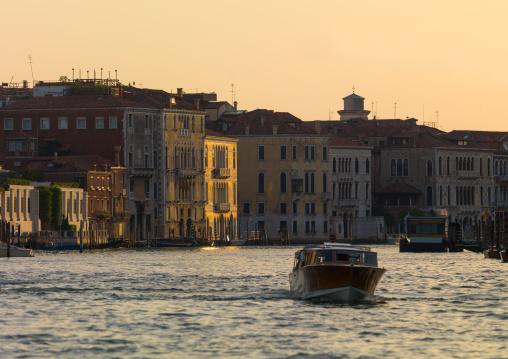Motorboat sailing on grand canal, Veneto Region, Venice, Italy