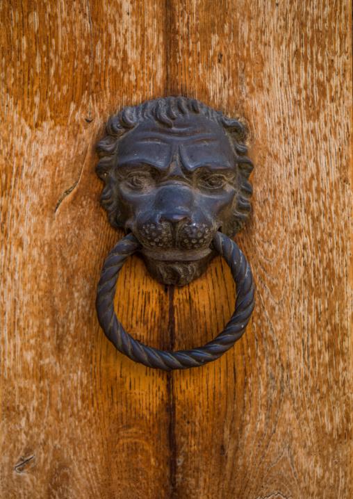 Ornate door knocker with a lion head, Veneto Region, Venice, Italy