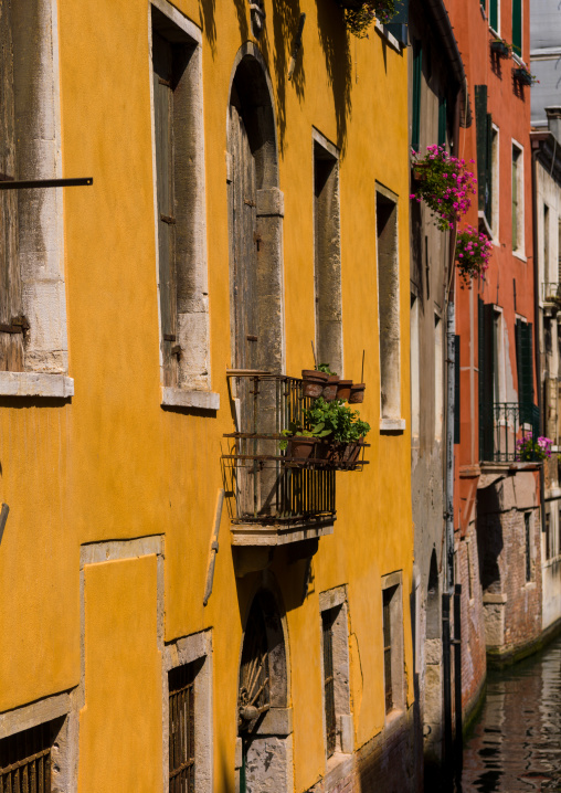 Colourful buildings, Veneto Region, Venice, Italy