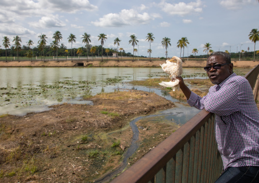 African man calling the sacred crocodile with a chicken in Felix Houphouet-Boigny's artificial lake of the presidential palace, Région des Lacs, Yamoussoukro, Ivory Coast