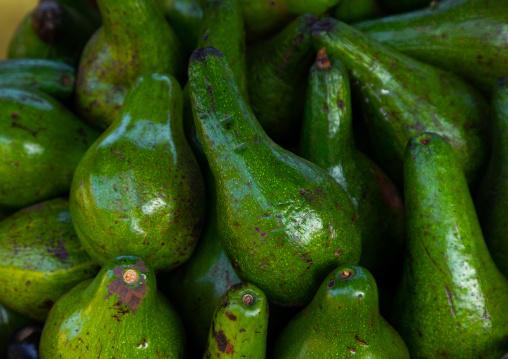 Avocadoes for sale in a market, Moyen-Comoé, Abengourou, Ivory Coast