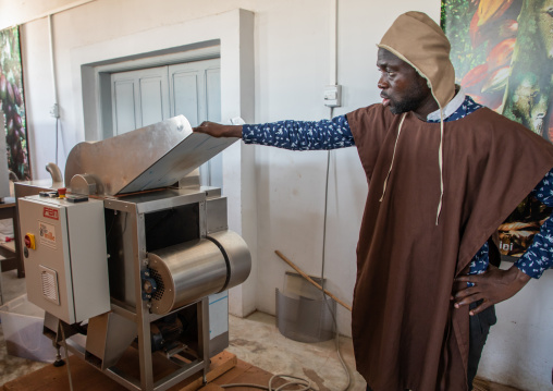 African man putting dried cocoa beans in a stone grinder, Sud-Comoé, Grand-Bassam, Ivory Coast