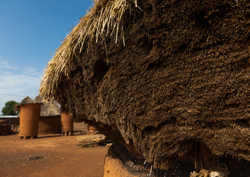 Senufo fetish house whose roof gets a new layer every year, Savanes district, Niofoin, Ivory Coast