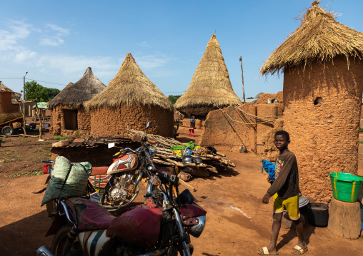 Granaries with thatched roofs, Savanes district, Niofoin, Ivory Coast