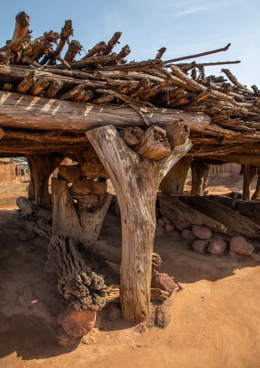 Palaver hut used as a gathering spot for the Senufo men, Savanes district, Niofoin, Ivory Coast