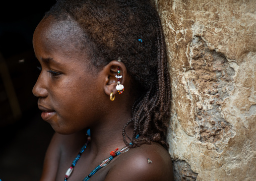 Portrait of a Peul tribe girl with earrings, Savanes district, Boundiali, Ivory Coast