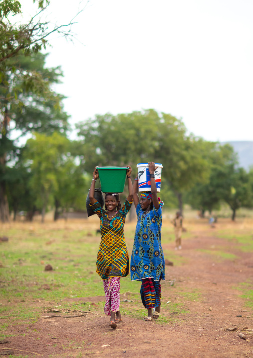 Peul tribe girls carrying buckets full of water on the head, Savanes district, Boundiali, Ivory Coast