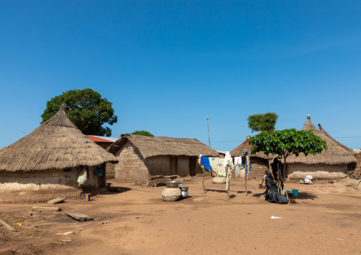 Huts with thatched roofs in a village, Denguélé, Korondougou, Ivory Coast