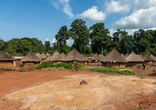 Huts with thatched roofs in a village, Bafing, Gboni, Ivory Coast