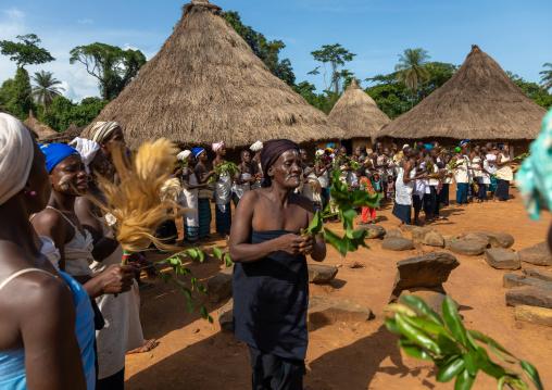 Dan tribe women dancing during a ceremony, Bafing, Gboni, Ivory Coast