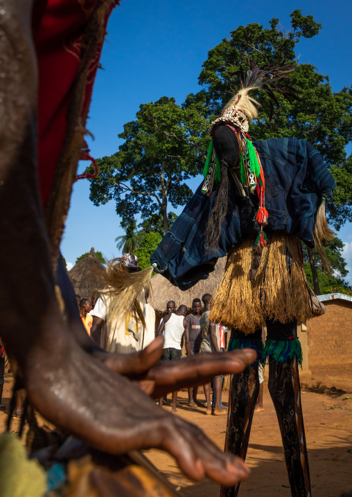 The tall mask dance with stilts called Kwuya Gblen-Gbe in the Dan tribe during a ceremony, Bafing, Gboni, Ivory Coast