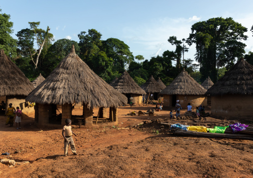 Huts with thatched roofs, Bafing, Gboni, Ivory Coast