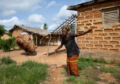 African women welcoming the We Guere mask dance during a ceremony, Guémon, Bangolo, Ivory Coast