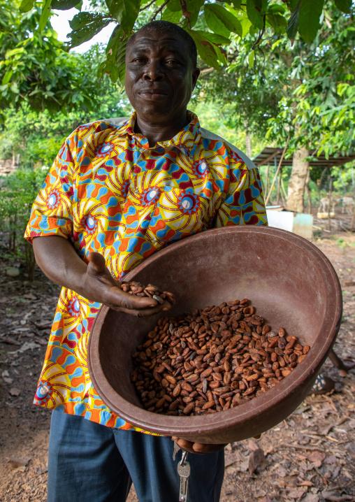 African man with dried cocoa beans, Région des Lacs, Yamoussoukro, Ivory Coast