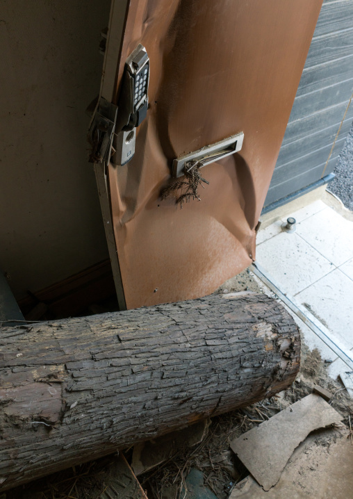 Tree trunk inside a house destroyed by the 2011 earthquake and tsunami five years after, Fukushima prefecture, Tomioka, Japan