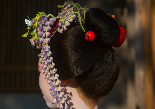 16 Years old maiko called chikasaya, Kansai region, Kyoto, Japan