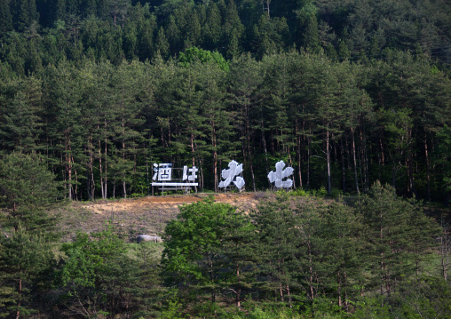 Giant daishichi sake ad in the forest in the highly contaminated area after the daiichi nuclear power plant irradiation, Fukushima prefecture, Iitate, Japan