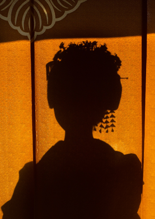16 Years old maiko called chikasaya silhouette, Kansai region, Kyoto, Japan