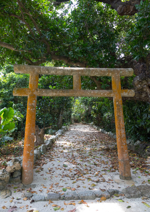 Torii gate in a small temple, Yaeyama Islands, Taketomi island, Japan