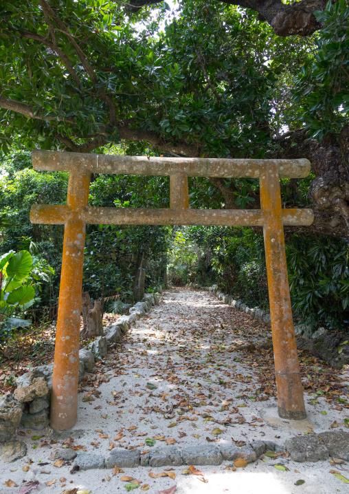 Torii gate in a small temple, Yaeyama Islands, Taketomi island, Japan