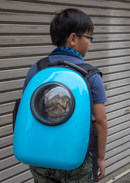 Japanese boy carrying his cat in a blue backpack, Kanto region, Tokyo, Japan
