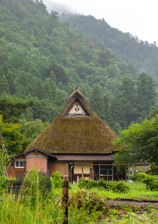 Thatched roofed houses in a traditional village against a bamboo forest, Kyoto Prefecture, Miyama, Japan