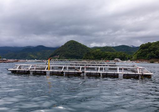 Fish farm in the sea, Kyoto prefecture, Ine, Japan