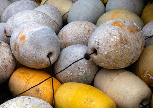 White and yellow buoys, Kyoto prefecture, Ine, Japan