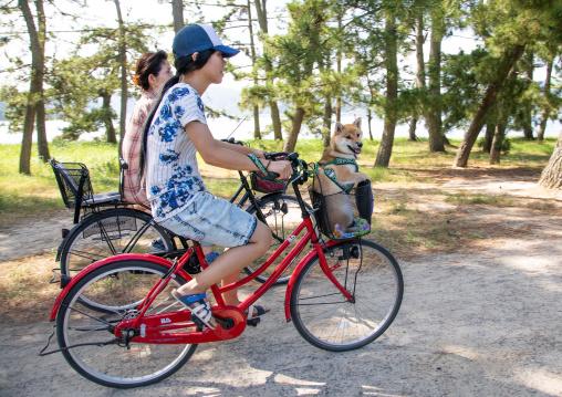 Japanese women riding bicycles in Amanohashidate, Kyoto Prefecture, Miyazu, Japan