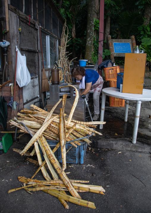 Japanese woman juicing sugar cane, Yaeyama Islands, Ishigaki-jima, Japan