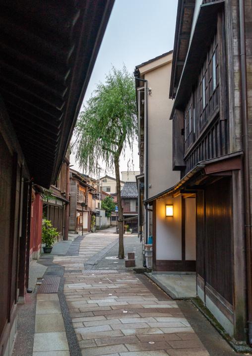 Wooden houses in Higashichaya old town, Ishikawa Prefecture, Kanazawa, Japan