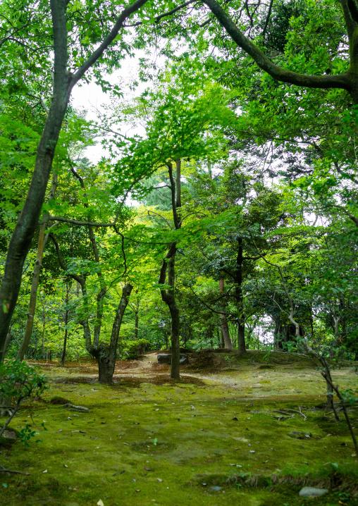 Kenroku-en garden, Ishikawa Prefecture, Kanazawa, Japan