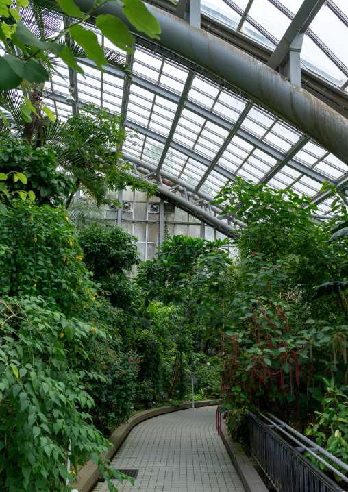 The Kyoto botanical garden greenhouse, Kansai region, Kyoto, Japan