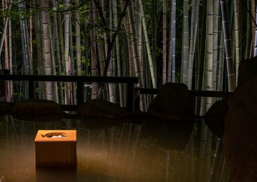 Bucket next to a bamboo forest hot spring in Takefue ryokan, Kumamoto Prefecture, Minamioguni-machi, Japan