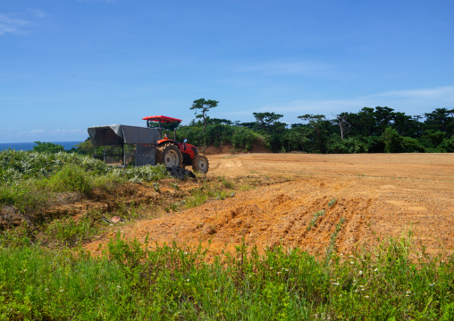 Truck with harvested pineapples through fields, Yaeyama Islands, Iriomote, Japan