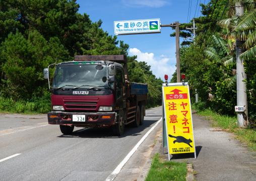 Road sign to protect iriomote cat, Yaeyama Islands, Iriomote, Japan
