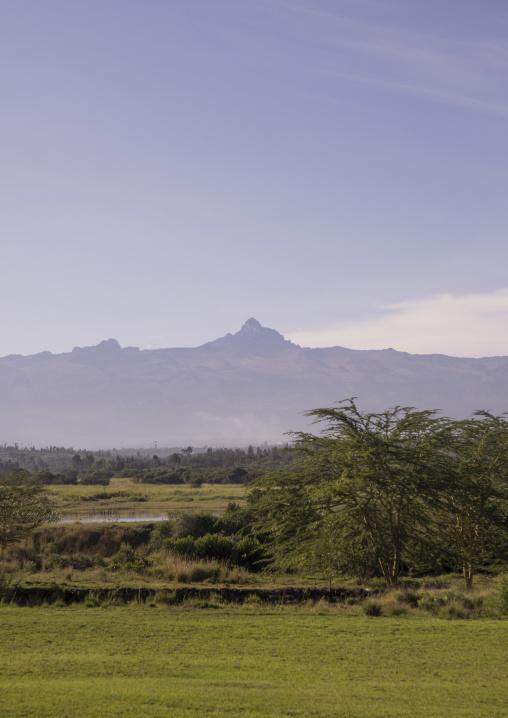 Grassy area in front of mt kenya, Laikipia county, Nanyuki, Kenya