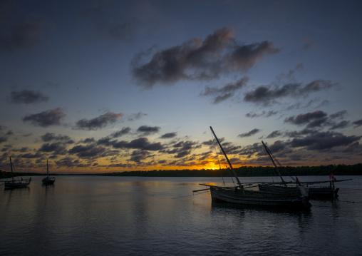 Fishing dhow moored along coastline at sunset, Lamu county, Matondoni, Kenya