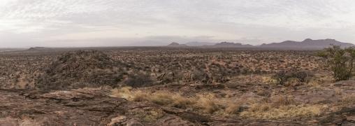 Panoramic view of the savannah, Samburu county, Samburu national reserve, Kenya
